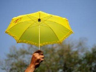 Bharti Axa Term Insurance