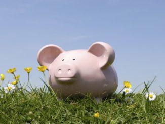 Money Investment Schemes