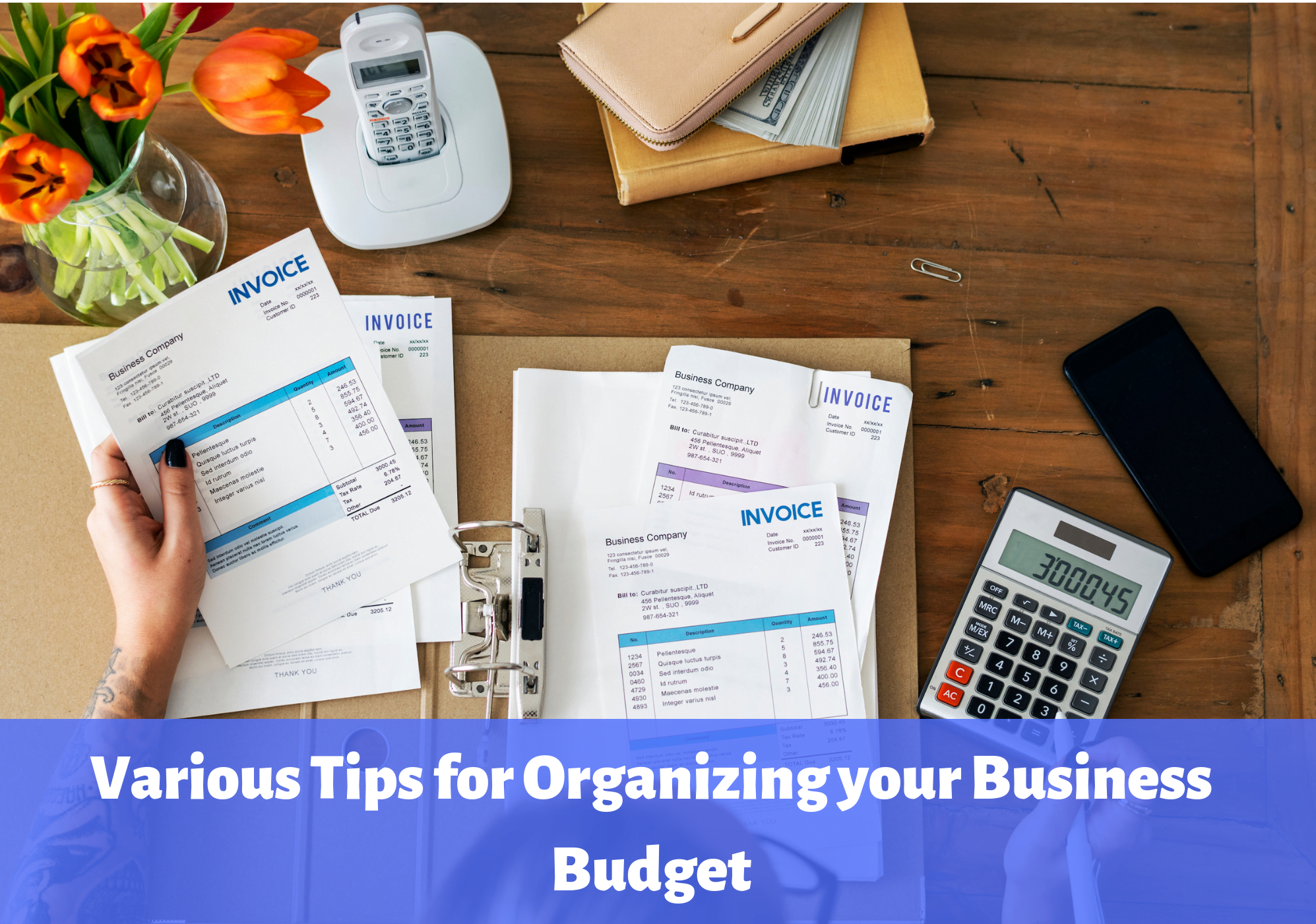 Organizing your Business Budget