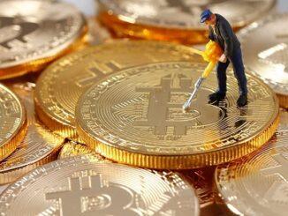 Bitcoin vs Gold Coins