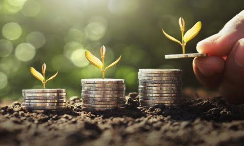 Ways to mange your wealth